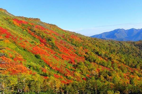 大雪山・赤岳|NPO法人かむい